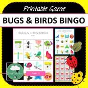 Bugs Birds Bingo Game COVER