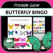 Butterfly Bingo Game COVER